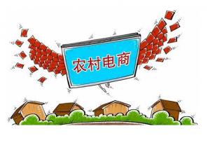 农村电商平台是农村经济发展的助推器